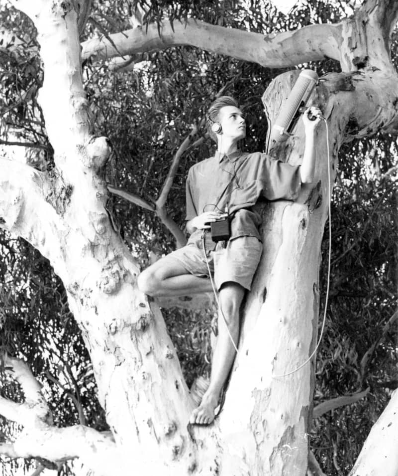 Black and white photo of Gareth Vanderhope recording sound effects up a tree