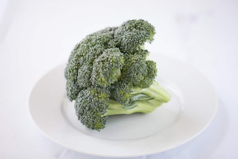 Broccoli on white plate